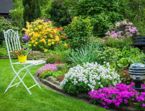 شركة تنسيق حدائق الشارقة |0567376923|تصميم حدائق